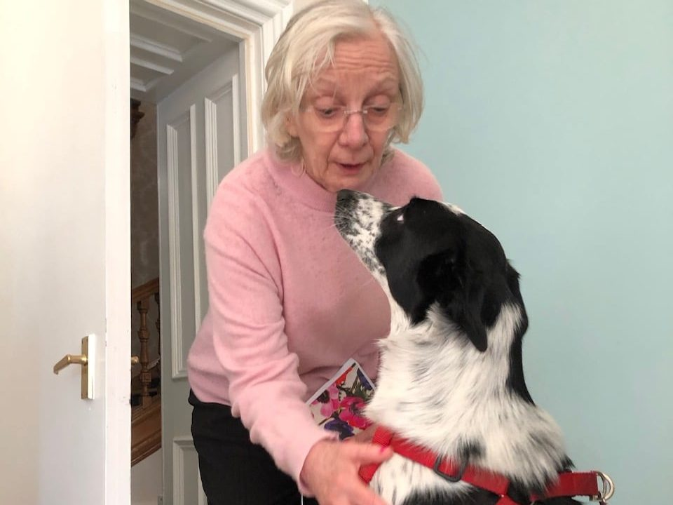 Lisden residents welcome a four-legged visitor