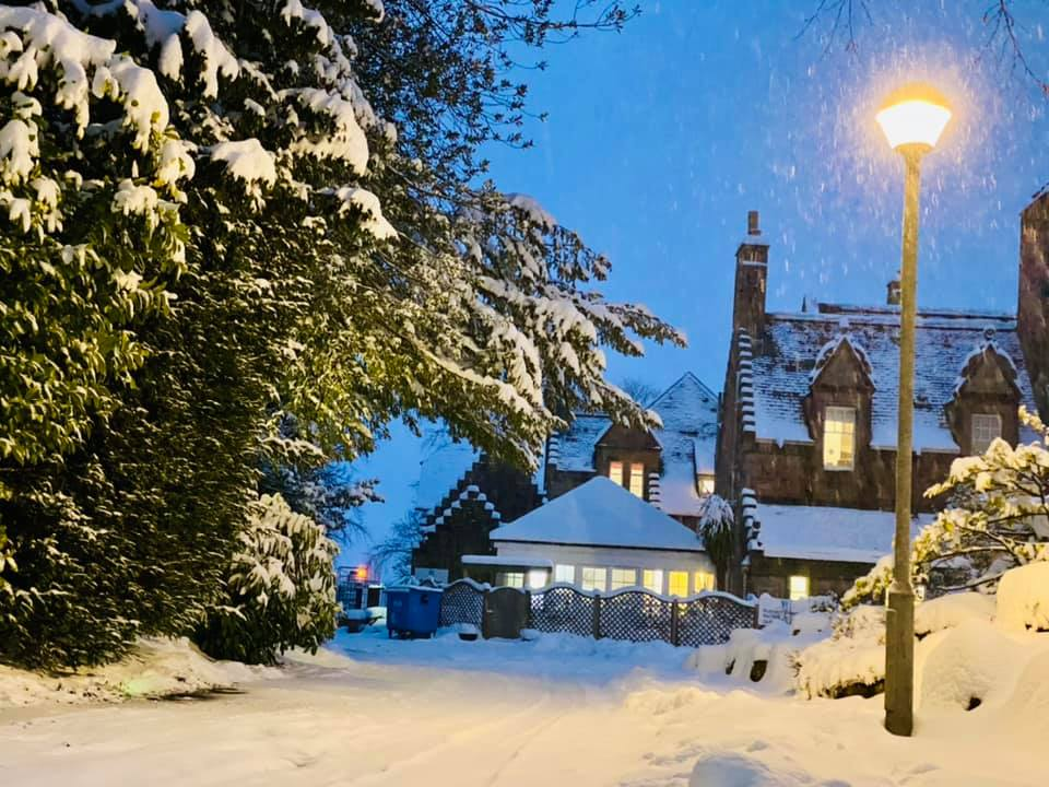 Heavy snow transforms our homes into winter wonderlands