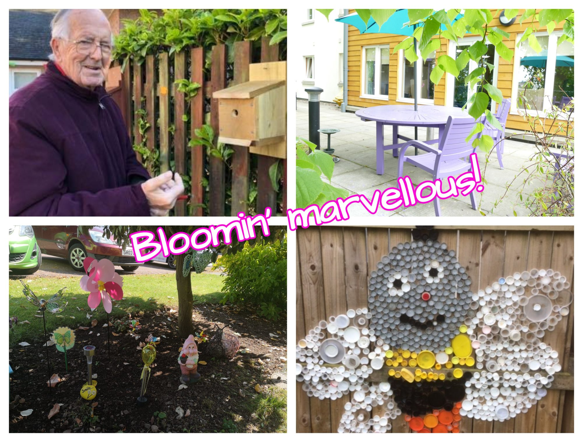 Spring has sprung at Balhousie Care Group with the launch of Balhousie in Bloom