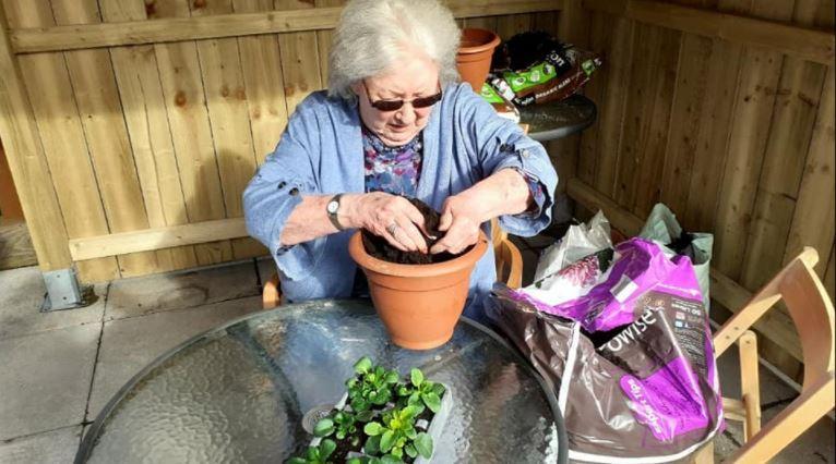 Project Bloom gets underway at Balhousie Stormont