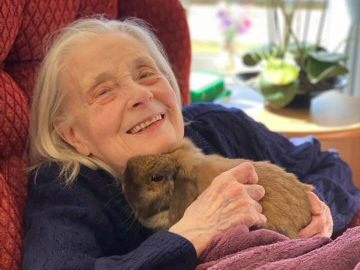 Meet Balhousie Huntly's newest residents – a trio of bunnies